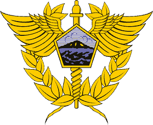 indonesia-customs